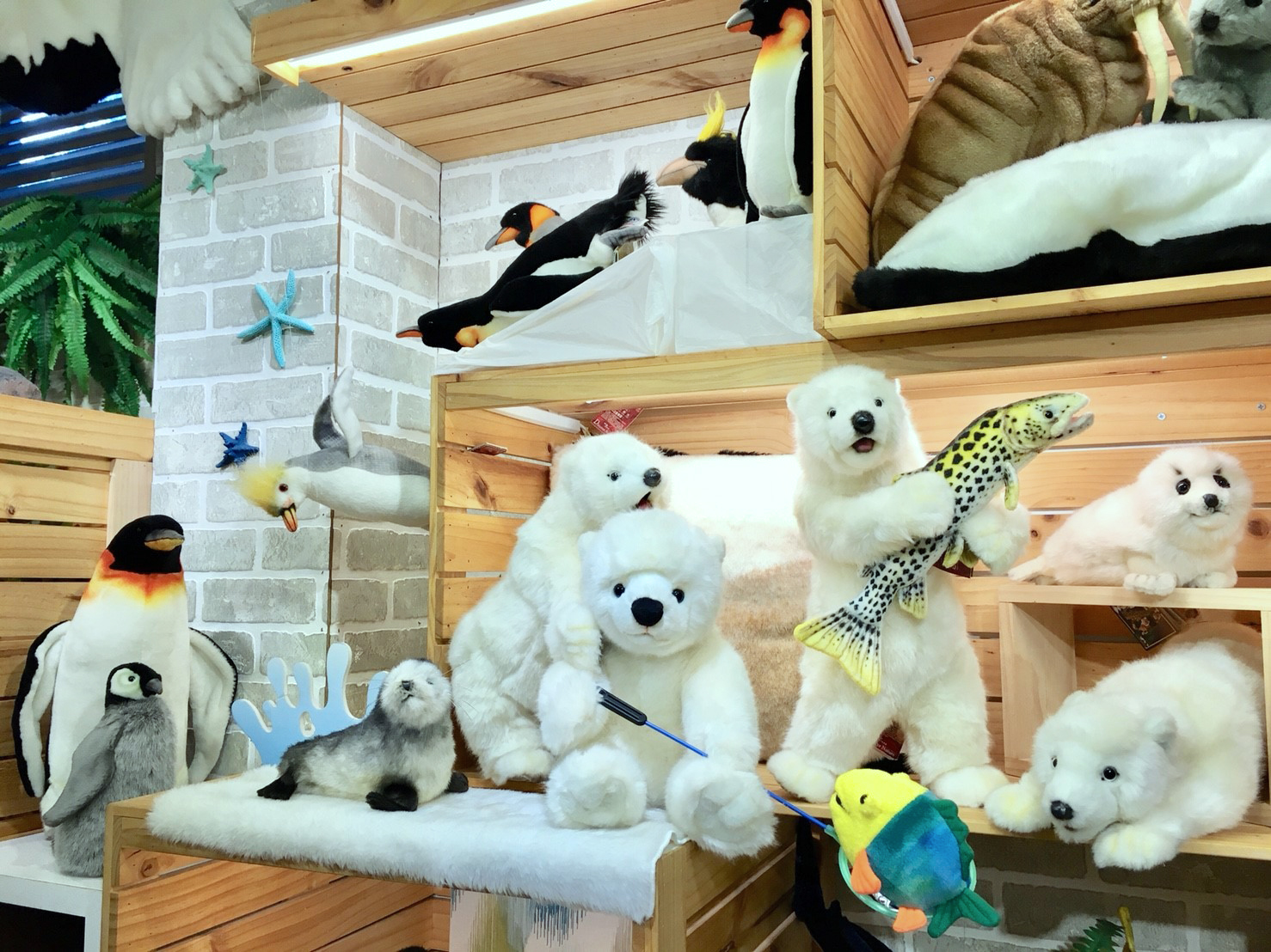Read more about the article 動物園店